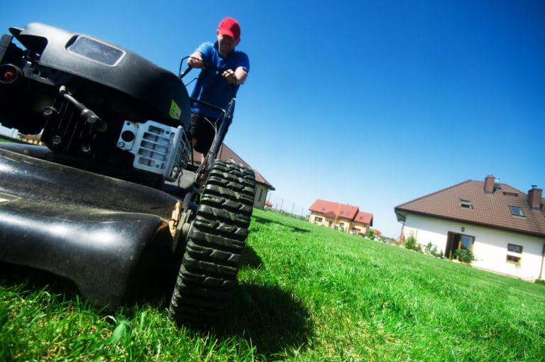 Do Lawnmowers Have Catalytic Converters