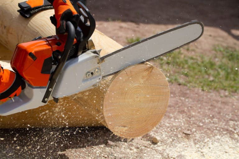 Do Chainsaws Have Serial Numbers