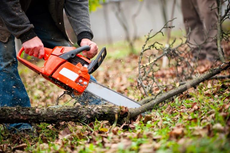 Why Do Chainsaws Kickback