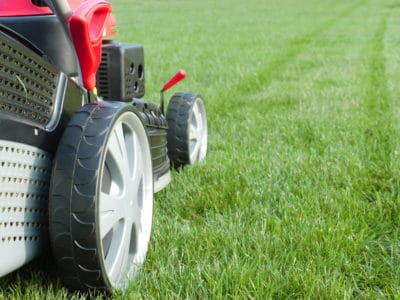 machine for cutting grass on lawn